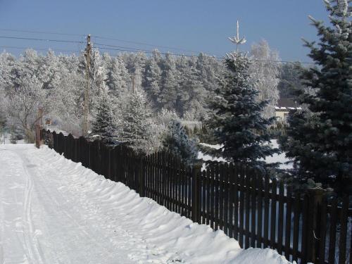 Mickiewiczówka