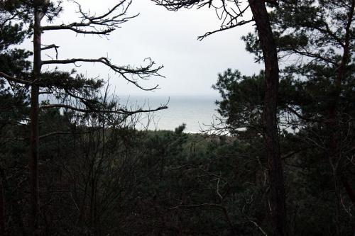 Widok z Wielbłądziego Garba na Bałtyk